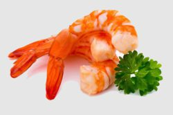 Researchers from Singapore have created packaging based on shellfish. Photo: Steamed tiger shrimp isolated on white background. © gitusik, fotolia.com
