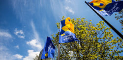 Photo: flags of interpack alliance, Copyright: Messe Düsseldorf/ C.Tillmann