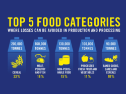 FOOD WASTE IN NUMBERS