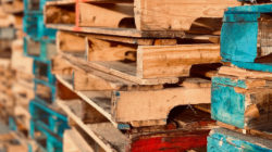 Colourful wooden pallets